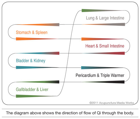 Diagram of the direction of Qi flow throughout the body