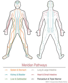 What are acupuncture meridians
