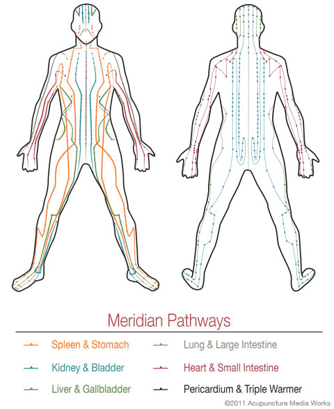 Acupuncture Meridian Pathway Chart - Figure front and back